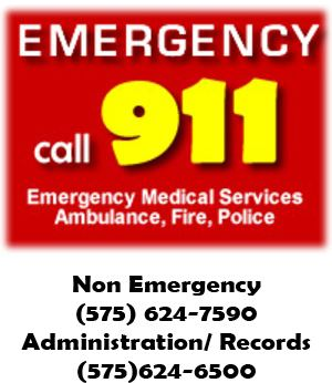 Call 911 in case of an emergency requiring Emergency Medical Services, Ambulance, Fire, Police